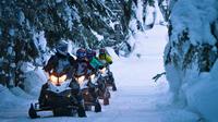 Snowmobile British Columbia Tour for Intermediate Riders