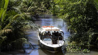 2-Day Deeper Mekong Delta Tour by Luxury Speedboat