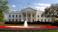Morning Monuments Tour of Washington DC