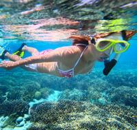 Snorkel Adventure with Beach Time at Anse Chastanet Resort in St Lucia