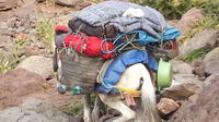 2 DAYS 1 NIGHT TREK ATLAS FROM BERBER VALLEYS