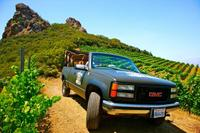 Family Safari and Wine Tasting in Malibu