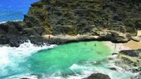 Eastern Oahu Shoreline Tour