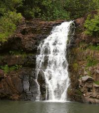 Oahu Circle Island Mini Bus Tour Including Dole Plantation and Waimea Falls