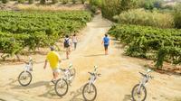 Ebike Tour:Alta Alella Winery Visit and Wine Tasting Premium Small Group