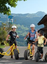 Monster Scooter Tour from Interlaken with Optional Fondue Dinner