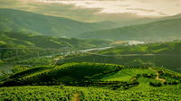 The Charming Douro Valley Tour Walking Tour