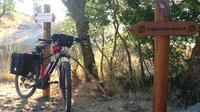 Bike & Cannoli