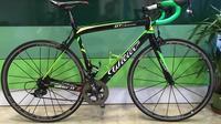 Full Carbon Road Bike Rental