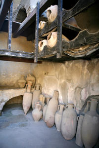 Private Tour: Ruins of Herculaneum Day Trip from Naples by Train