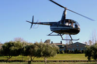 Private Tour: San Diego Helicopter Flight and Temecula Winery Lunch