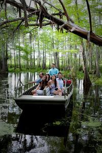 Honey Island Swamp Tour With Transport