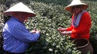 Hangzhou Tea Culture Day Tour*