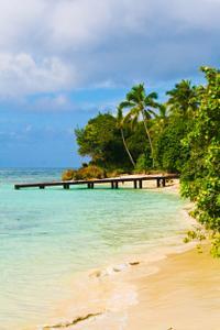 Los Haitises National Park and Paraiso Caño Hondo Trip from La Romana