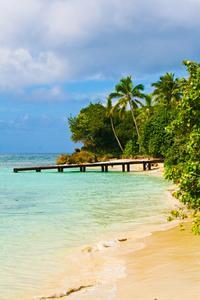 Los Haitises National Park and Savanna de la Mar Trip from La Romana