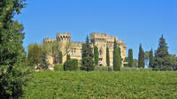 Private Day Tour to Avignon and Chateauneuf-du-Pape Wineries from Aix-en-Provence