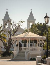 San Jose del Cabo Tour: City Sightseeing, Market and Estuary