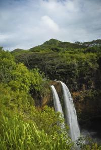 Private Tour: Waimea Canyon, Wailua Falls, Kauai Coffee Company and Spouting Horn