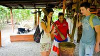 Punta Cana Safari Tour