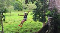 Aventura por Monkey Jungle y tirolina desde Puerto Plata