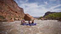 Moab's best rafting trips!*