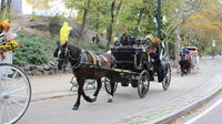 Private Central Park Horse and Carriage Ride