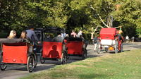 Private Central Park Pedicab Tour with Photoshoot