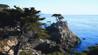 Day Trip to Monterey and Carmel via California Coast