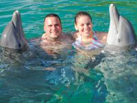 Dolphin Swim in Freeport