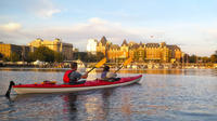 Victoria Harbour Sunset Kayak Tour