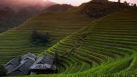 Longji Rice Terrace*