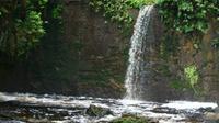Amazon Waterfalls