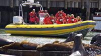 Alcatraz and San Francisco Bay Sightseeing Boat Tour