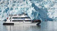 Full-Day Kenai Fjords National Park Cruise