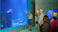 Hurghada Grand Aquarium Entrance Ticket