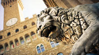 PRIVATE  ACCADEMIA-WALKING TOUR-LUNCH-DUOMO