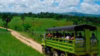 Super Truck Safari*