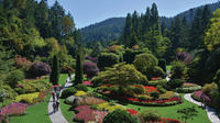 Brentwood Bay Fall Colors Kayak Tour and Butchart Gardens Visit