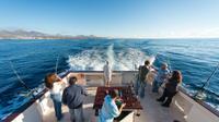 Lanzarote Bottom Fishing and Coastal Trolling