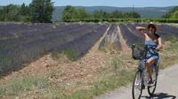 Luberon Electric Bike Rental from Bonnieux