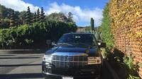 Private San Francisco to Napa Valley Day Trip