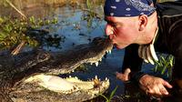 60-Minute Everglades Airboat Tour and Gator Boys Alligator Rescue Show