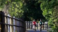 4-Hour Pune University Complex Cycling Tour