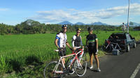 Morning Road Bike Tour in Bali Village