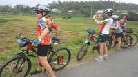 Full-day Bike Tour of My Son and Hoi An