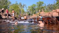 Litchfield and Jumping Crocodiles Full Day Trip from Darwin