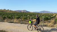 Circuit œnologique à vélo électrique dans les vignobles de Comte Peraldi à Ajaccio - Corse