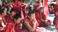 3-Night Lhasa City Small Group Tour