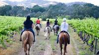 1-Hour Barossa Valley Horse Ride: Vineyard Journey