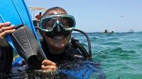 Happy Divers*